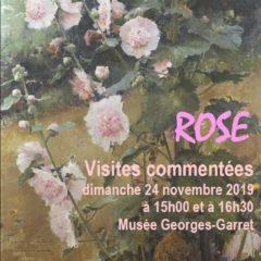 Dimanche 24 novembre 2019 au Musée de Vesoul : visite commentée de l'exposition «Rose»